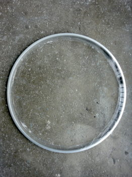 Araya box section vintage look road bike rim